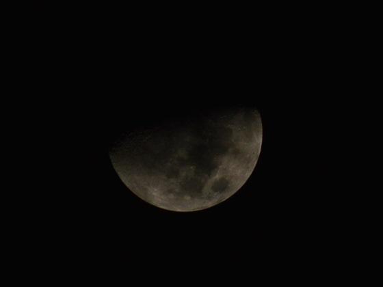 月齢7.7