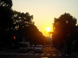 ナポリ通り