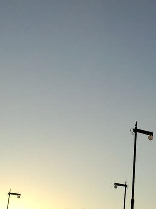 20110117街灯