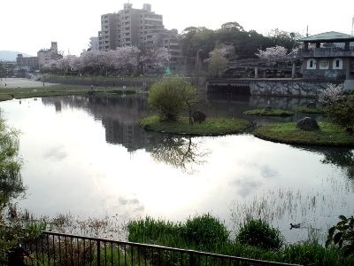 野間大池2