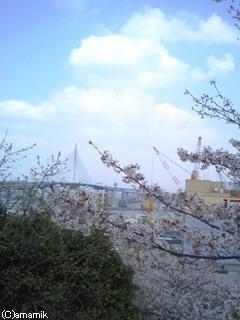 西公園・展望台