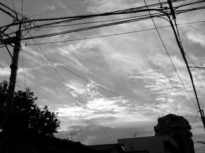 電線(20100724)