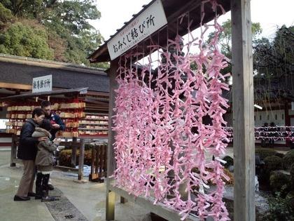 おみくじ結び所20110211